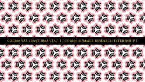 COD200 Yaz araştırma Stajı I / COD200 Summer Research Internship I